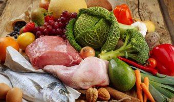 a dieta paleolítica